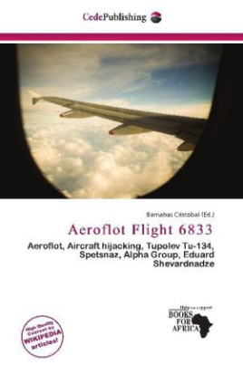 Aeroflot Flight 6833