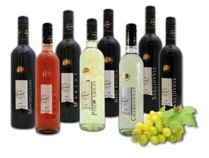 Weinpaket trockener Qualitätswein Gourmet-Edition