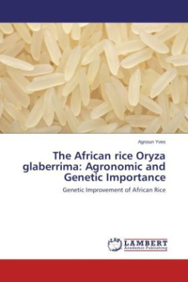 The African rice Oryza glaberrima: Agronomic and Genetic Importance