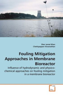 Fouling Mitigation Approaches in Membrane Bioreactor