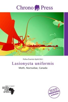 Lasionycta uniformis