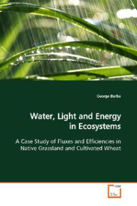 Water, Light and Energy in Ecosystems