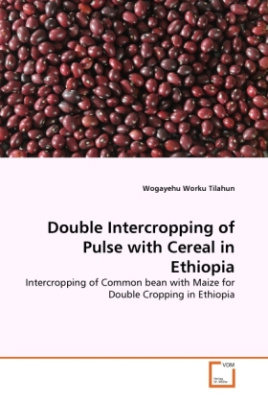Double Intercropping of Pulse with Cereal in Ethiopia