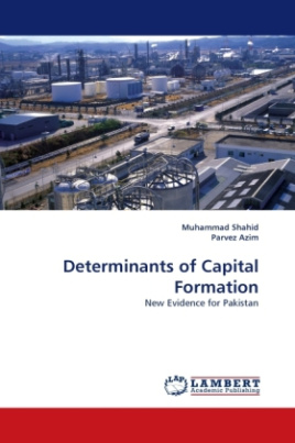 Determinants of Capital Formation