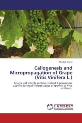 Callogenesis and Micropropagation of Grape (Vitis Vinifera L.)