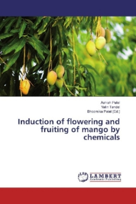 Induction of flowering and fruiting of mango by chemicals