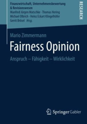 Fairness Opinion