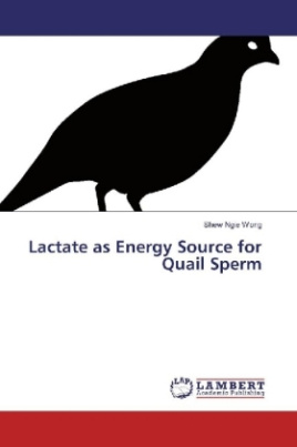 Lactate as Energy Source for Quail Sperm