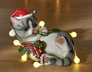 Katze mit LED