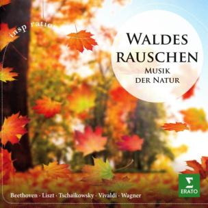 Waldesrauschen-Musik der Natur