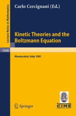 Kinetic Theories and the Boltzmann Equation
