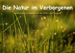 Die Natur im Verborgenen (Posterbuch DIN A3 quer)