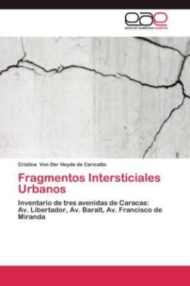 Fragmentos Intersticiales Urbanos
