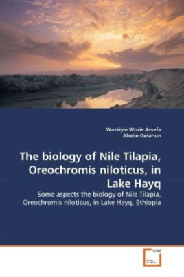 The biology of Nile Tilapia, Oreochromis niloticus, in Lake Hayq