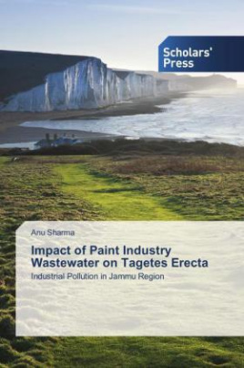 Impact of Paint Industry Wastewater on Tagetes Erecta