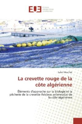 La crevette rouge de la côte algérienne