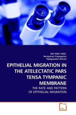 EPITHELIAL MIGRATION IN THE ATELECTATIC PARS TENSA TYMPANIC MEMBRANE