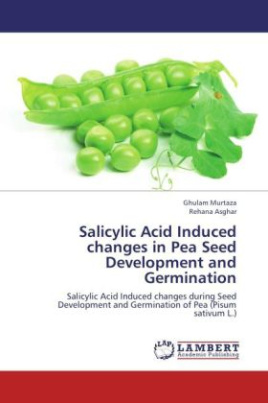 Salicylic Acid Induced changes in Pea Seed Development and Germination