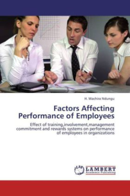 Factors Affecting Performance of Employees