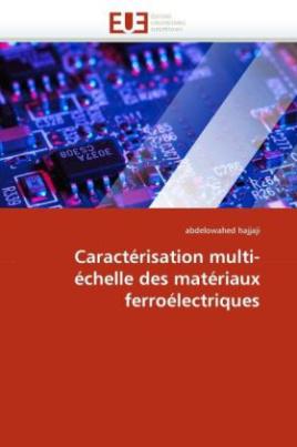Caractérisation multi-échelle des matériaux ferroélectriques